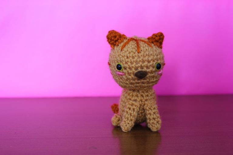 gato patrón